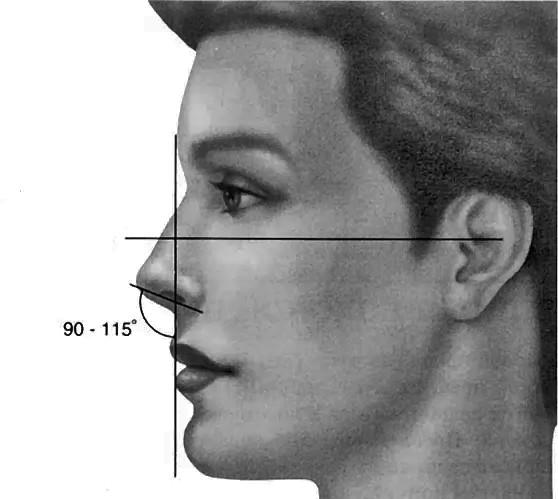 нормальный носогубный угол